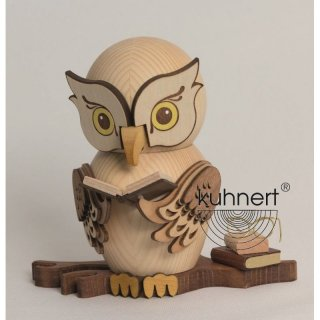 Kuhnert incense figure owl with books