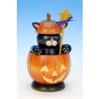 Christian Ulbricht Smoker cat in pumpkin